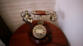 I couldn't stop loving their antique phones.Just see how cute it is